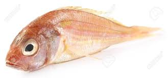PUA  FISH 500GM